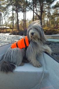 Sally gillar att åka båt