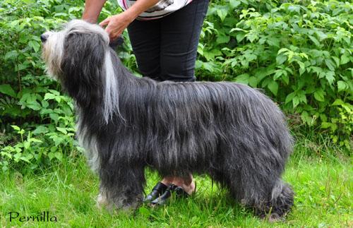 Wilma 2010