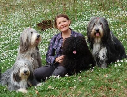 Wilma (längst till höger) med sin flock.