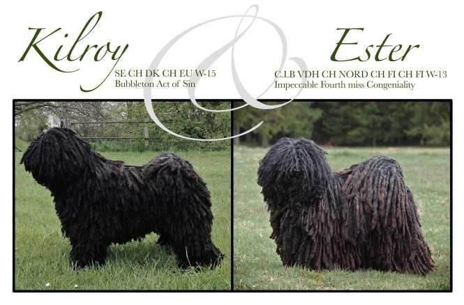 Kilroy och Ester färg