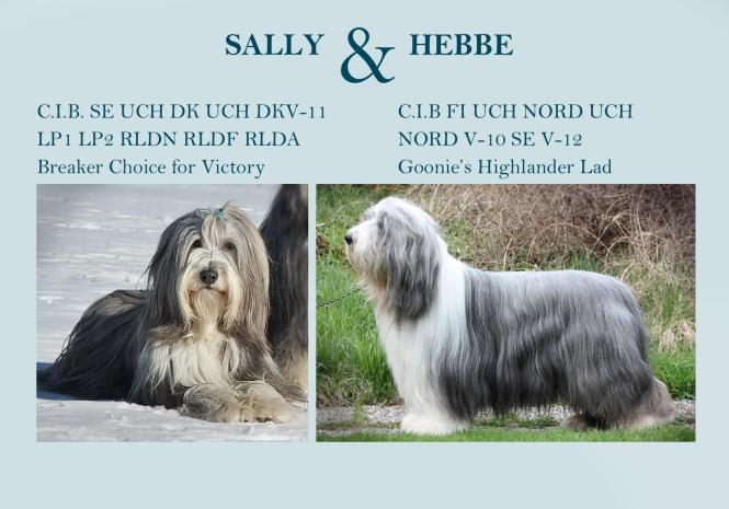 Sally och Hebbe 2013