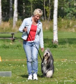 Foto: Pernilla Engstrand. Valle tränar lydnad