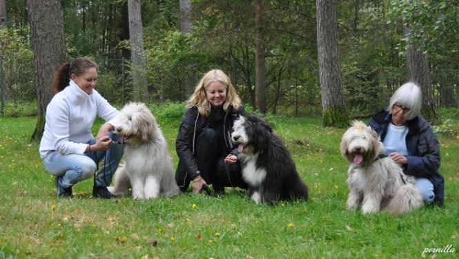 Tina med Bailey, Annette med Malkin och Ingrid med Busan