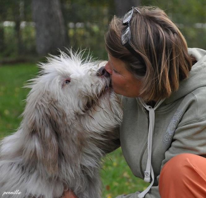 Jag får en blöt puss av Bailey