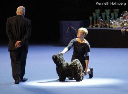 Finsk vinnare 2013. Photo: Kenneth Holmberg,