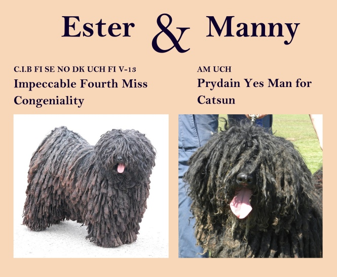 Ester and Manny 2014