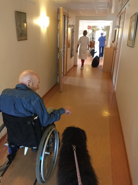 På äldreboendet där Inger jobbar