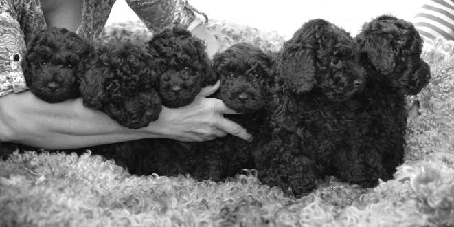 Edith med sina syskon