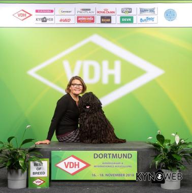 BIR i Dortmund 2018