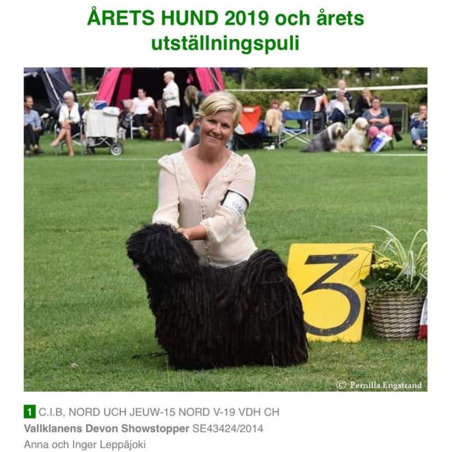 Kafka Årets hund i SvkFUR 2019