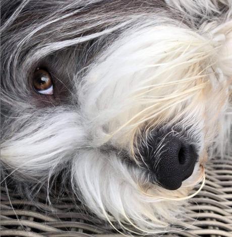 Bonnie med sina vackra ögon